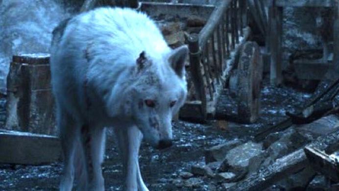 Game of Thrones y la nada convincente explicación de por qué Jon no se despidió de Ghost